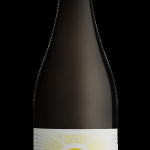 2020 Apricus Hill Pinot Noir